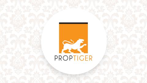 Prop Tiger