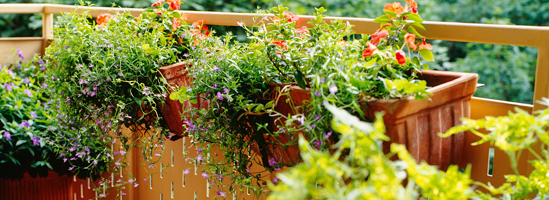 Awesome Balcony Garden Ideas That You Will Love